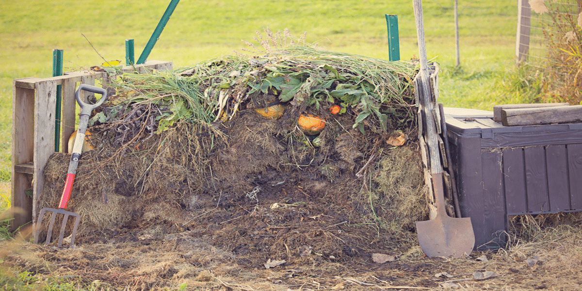 How To Start Composting – The Definitive Guide