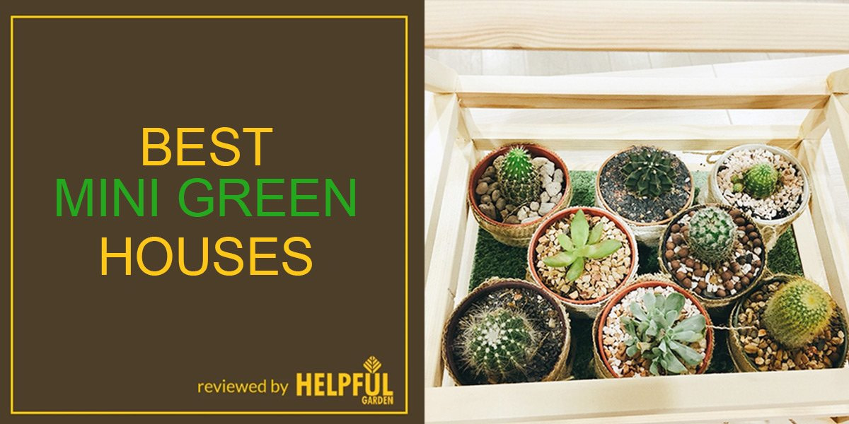 best mini greenhouses, greenhouse, review, garden