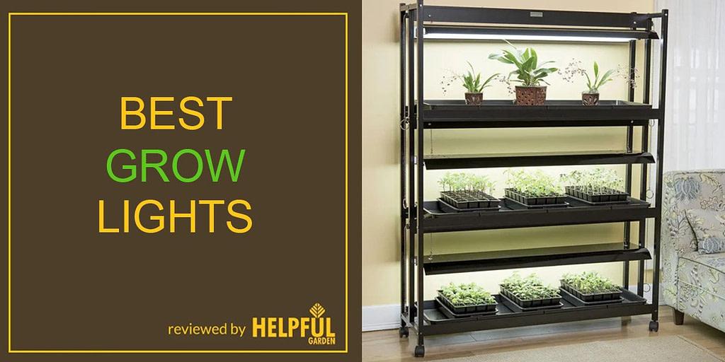 10 best indoor grow lights for plants