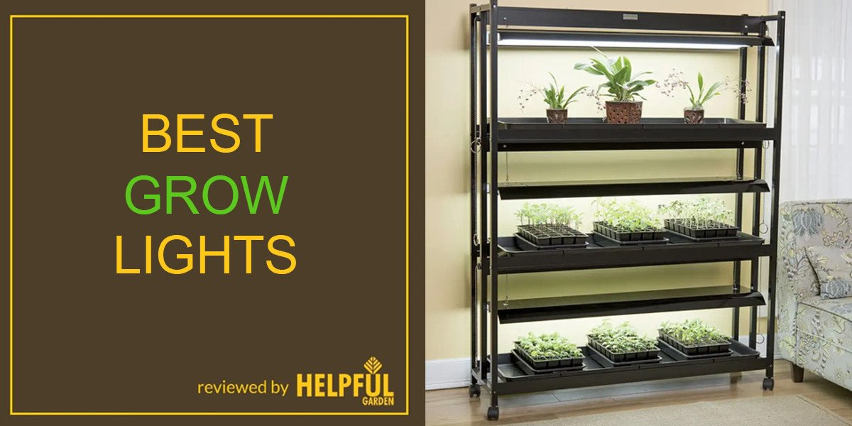10 best indoor grow lights for plants