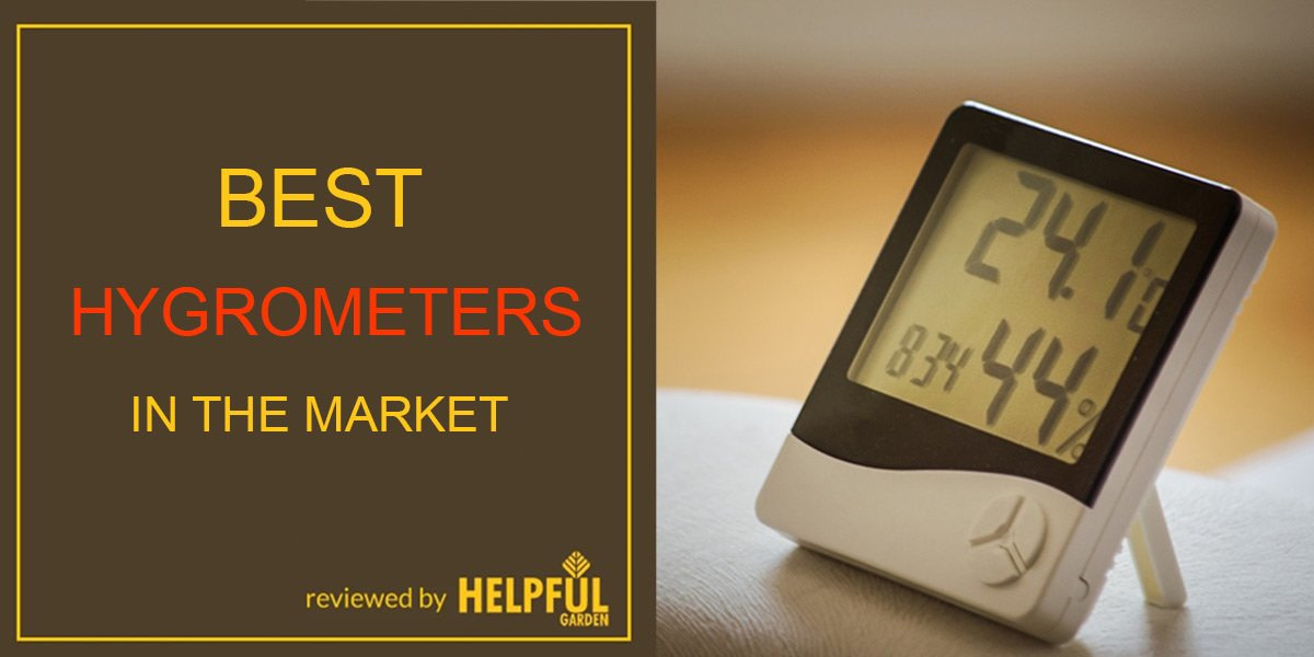 best hygrometers in the market