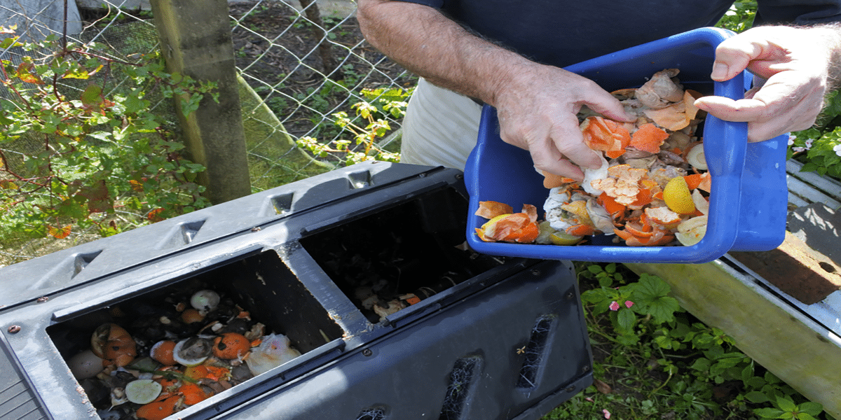 How I Arrange My Compost