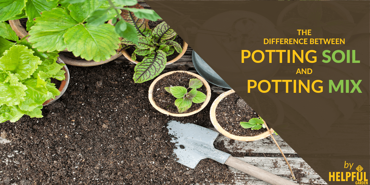 The Difference Between Potting Soil and Potting Mix